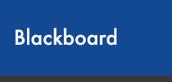 Sign into Blackboard